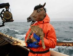 Mask Hysteria: 10 Amazing Cats & Dogs Wearing Horse Masks  ... from PetsLady.com ... The FUN site for Animal Lovers