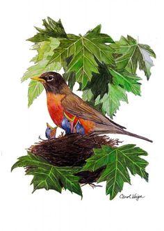 Bird Colored  Pencil Drawings by Carol Veiga, via Behance