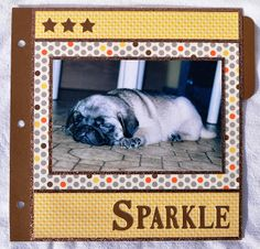 DAT'S My Style: Sparkle 8 x 8 Layouts #Artbooking #Babycakes - cover of cute pet album