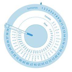 Gestograma para calcular las fechas de tu embarazo