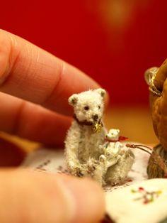 Teddy Holding a Miniscule Teddy!  ---------------モヘアベア---------------