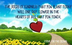 Transformation Thursday, who's life will you bless and help transform today.  Take the first step and make a difference.  The seeds of kindness that you plant today, will one day flower in the hearts of all that you touch. #bodyofchrist
