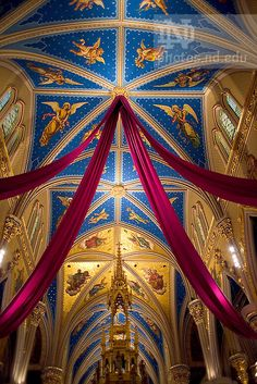 Basilica in Purple Bunting for Lent  Copyright Notre Dame Photography