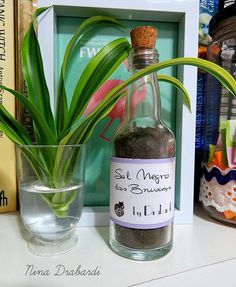 sal negro das bruxas Gypsy Witch, Pagan Witch, Wicca Witchcraft, Feng Shui, Vodka Bottle, Glass Vase, Rose, Magic, Krishna