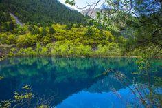 Tiger Lake, Jiuzhaigou Valley | por jmhullot