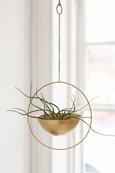 Add some serious bling to your green gang. The post Add some serious bling to your green gang. appeared first on Decoration. Gold Planter, Metal Planters, Garden Planters, Wall Planters, Succulent Planters, Indoor Planters, Indoor Gardening, Succulents Garden, Decorative Accessories