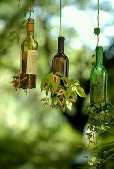 wine bottles hanging.. great idea