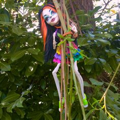Monster high Skelita en acro-branche
