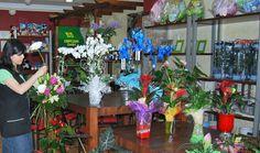 Centros y ramos de flores