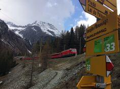 The Albula Railway Adventure Trail Switzerland Summer, Switzerland Tour, Swiss Travel Pass, Travel Flights, Train Tour, Summer 2016, Trail, Tours, Adventure