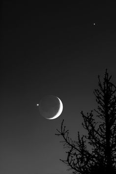 Conjunction of Moon with Venus and Jupiter (Dec A conjunction of the Moon with Venus and Jupiter is a nice and rare scenery. Venus was occulted by the Moon on Dec 01 from Venus, Luna Moon, Shoot The Moon, Moon Photography, Landscape Photography, Landscape Photos, Photography Tips, Moon Rise, Sky Moon