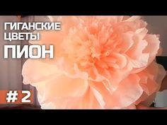 ГИГАНТСКИЕ ростовые цветы. Пион (часть II) / Giant paper flowers | Peony | Part 2 - YouTube