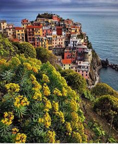 Spring in Manarola. 1 of the 5 wonderful villages of the Cinque Terre. Cinque Terre, Wonderful Places, Beautiful Places, Best Of Italy, Italy Tours, Sicily Italy, Places Around The World, Aerial View, Italy Travel