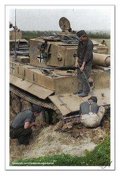 "WW2 - Axis Armour - Heavy: Panzerkampfwagen Tiger Ausf. E (""332"") near Znamenka, Ukraine, 4th October, 1943."