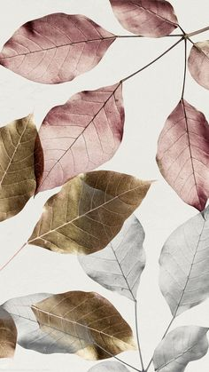 Metallic pink leaves with silver and gold leaves pattern bac Gold Wallpaper, Iphone Background Wallpaper, Pastel Wallpaper, Flower Wallpaper, Leaves Wallpaper, Tapete Gold, Leaf Texture, Pink Leaves, Metallic Pink