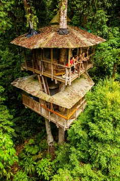 Mateo et Erica Hogan proposent de faire vivre une expérience exceptionnelle aux «éco-touristes» de passage au Costa Rica. En recherche d'authenticité et de cohérence d…