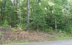 LOOKING FOR A GREAT BUILDING LOT WITH PAVED COUNTY ROAD AND ###NO HOMEOWNERS FEES###!! THIS IS FOR YOU! Great wooded lot 1.53 acres on paved county road SOUTH OF ELLIJAY!! ONLY $12,000.00