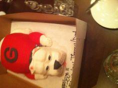 Georgia Bulldog cake.