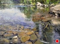 """Shallow Lake by Mike Wise Oil ~ 18"""" x 24"""""""