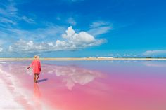 Finding The Coloured Lagoons and Pink Flamingoes In Yucatan Mexico - Bruised Passports