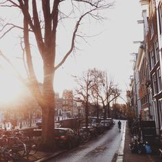 Morning light - Kerkstraat, Amsterdam