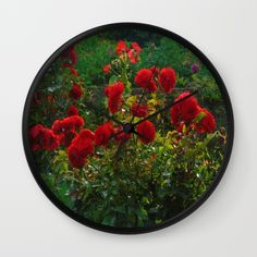 A lovely honey bee and red Salvia flowers Rose Wall, Buy Roses, Salvia, Icing, Bee, Honey, Tasty, Ethnic Recipes, Flowers