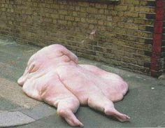 An extremely fat person who's jumped off a building - The Weird Picture Archive
