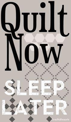 Craft Snark: Quilt Now - Sleep Later