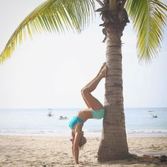 janalyn.rose : Chocolate palm trees surfing music on the shoreline.  Gentleness…