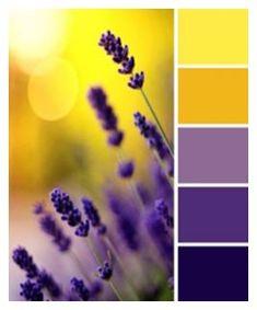68 ideas for wall color palette paint colours shades Color Schemes Colour Palettes, Colour Pallette, Color Palate, Color Combos, Purple Color Schemes, Best Colour Combinations, Summer Colour Palette, Purple Palette, Pantone