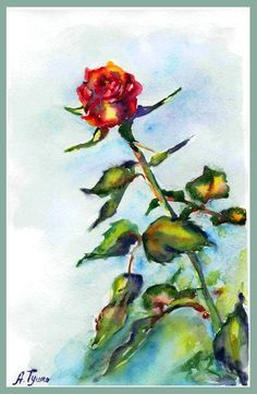 Rose, Red rose Nature art  Watercolor Roses Watercolor Flowers Watercolor Painting Original Painting Hand painted Painting Woll Decor 8x12
