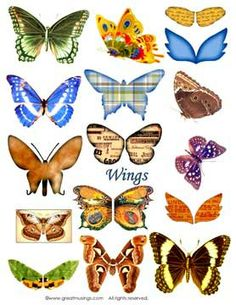 Digital Collage Sheet Download Butterfly Wings Images ...take flight with your vintage images!