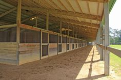 Holly Hill Training Center in Holly Hill, South Carolina - horse barn