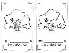Texas Symbols Packet for kindergarten and 1st grade Social