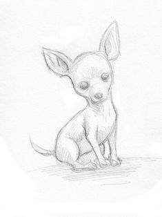 chihuahua line drawing Chihuahua Drawing, Chihuahua Art, Puppy Drawing, Dog Drawing Easy, Drawing Ideas, Teacup Chihuahua, Easy Drawings Sketches, Animal Sketches, Cartoon Drawings
