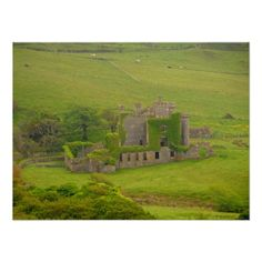 Beautiful Clifden Ireland Ancient Castle Ruins Poster This poster print features travel nature photography taken in Ireland of a beautiful old castle in ruins with moss climbing its broken down walls and green pastures in the foreground and cattle in the background. Great for a country home, rustic lodge, office or gift for a hiker, climber, outdoors man - woman or someone who loves the beauty of days gone by!