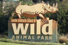 Discover herds of animals roaming field habitats on a unique adventure at the San Diego Zoo Safari Park. Wild Animals Pictures, Animal Pictures, Rancho Cucamonga California, Teeth In A Day, Wild Animal Park, Family Vacation Spots, San Diego Zoo, California Dreamin', Zoo Animals