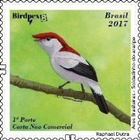 Stamp: Brazilian Birds - Self Adhesives (Brazil) Col:BR 2017-06C