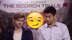 Read I like TMR from the story Memes De Maze runner! Maze Runner Trilogy, Maze Runner Cast, Maze Runner The Scorch, Maze Runner Movie, Maze Runner Series, Maze Runner Thomas, James Dashner, Teen Wolf, Haha