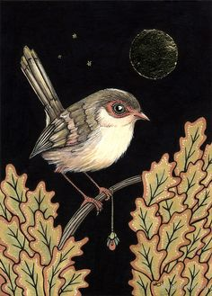 'Cadeau' by Anita Inverarity Sketchbook Inspiration, Painting Inspiration, Bird Artwork, Bird Drawings, Bird Pictures, Arte Floral, Vintage Birds, Beautiful Birds, Folk Art