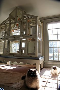 Martha Stewarts Canary Cage... oh my, may I have one please?!?