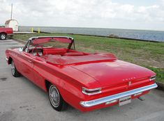 1962 Buick Special Convertible | L62 | Kissimmee 2013 Convertible, Buick Skylark, Rear Window, Old Cars, Classic Cars, Automobile, Restoration, Auction, Car Stuff