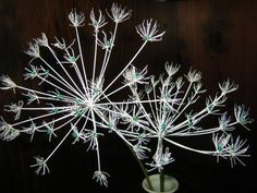 Create beautiful everlasting flowers with Dill and Beads