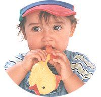 Children's Toys, All Toys, Kids Toys, Toy R, Chemist, Teddy Bear, Canada, Education, Baby