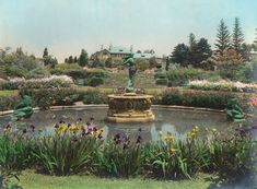 Once the estate of a wealthy New York real-estate mogul, surviving gardens known as Greenwood Gardens are an extraordinary example of the diversity and ingenuity of individual Arts and Crafts designers.