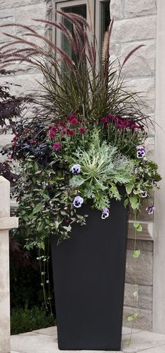 Gorgeous fall container garden with fountain grass, pansies, ornamental cabbage and mums. Gorgeous fall container garden with fountain grass, pansies, ornamental cabbage and mums. Large Outdoor Planters, Tall Planters, Flower Planters, Garden Planters, Outdoor Plants, Garden Grass, Outdoor Flowers, Outdoor Patios, Black Planters