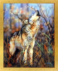 Let the wall of your room reflect your attitude! This grey wolf howling art print framed poster will be an ideal pick for your room. It will speak volumes about your unconventional way of thinking. You'll definitely enjoy viewing this framed art as a part of your home. You'll definitely enjoy viewing this framed art as a part of your home. Its wooden golden frame accentuates the poster mild tone. The frame is made from solid wood measuring 18x22 inches with a smooth gesso finish.
