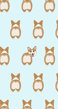 Free Dachshund and Corgi Wallpaper – # Dachshund - Wallpaper Corgi Wallpaper, Dog Wallpaper Iphone, Phone Wallpapers Tumblr, Fall Wallpaper, Animal Wallpaper, Funny Wallpapers, Wallpaper Backgrounds, Colorful Wallpaper, Pretty Wallpapers Tumblr