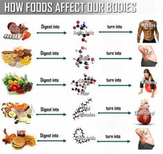 What Happens to Food After You Eat It? - PositiveMed