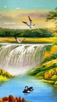 GIFS DE NATURALEZA: Gifs de cataratas